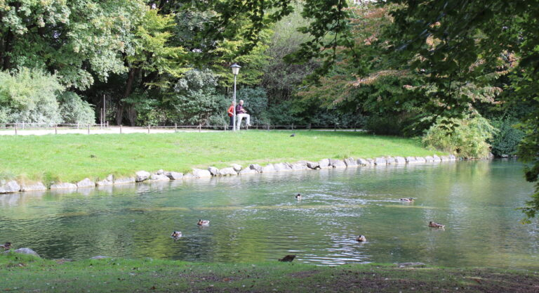Duck Pond at The English Gardens in Munich