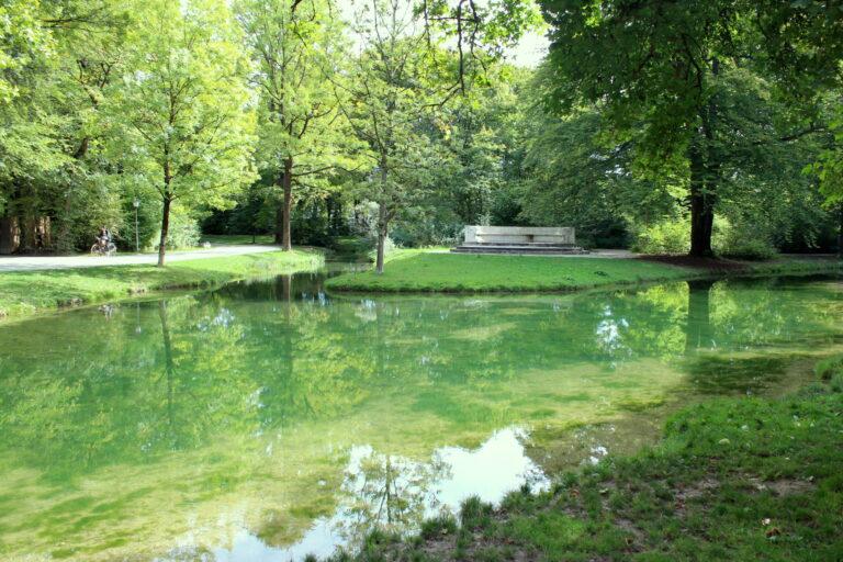 Idyllic Duckpond at The English Garden of Munich