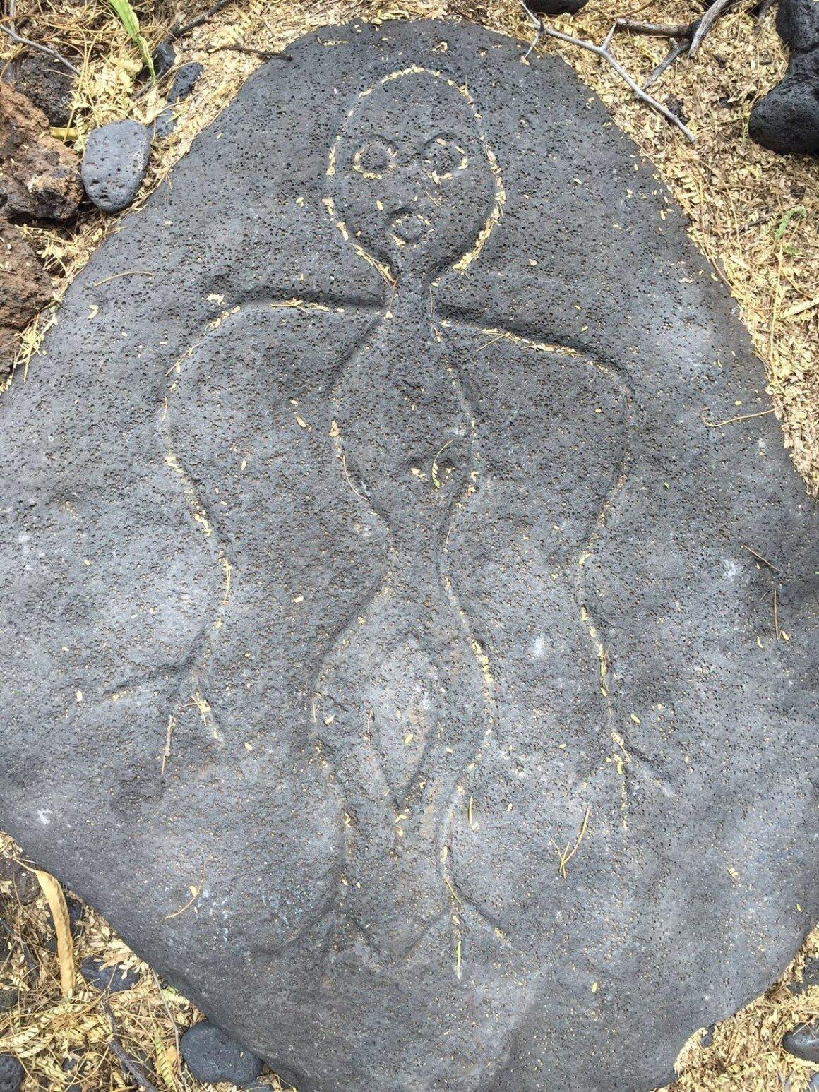 Petroglyph 5 on the Pu'u Loa Petroglyph Trail