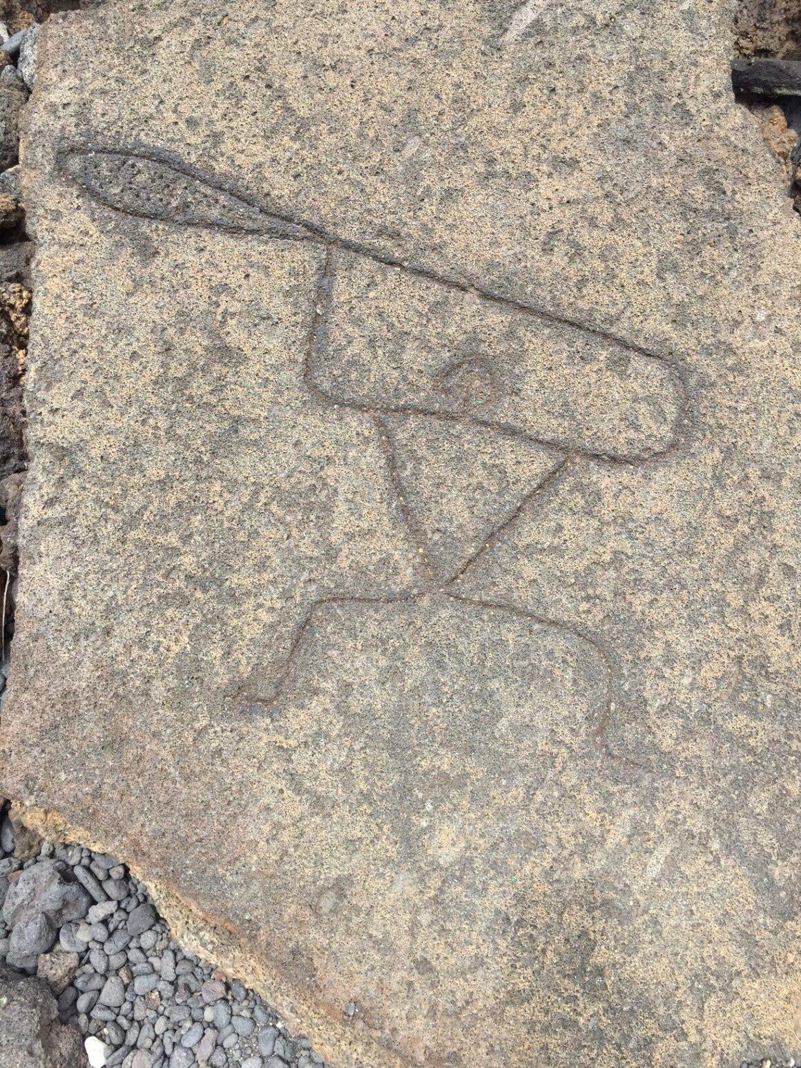 Petroglyph 8 on the Pu'u Loa Petroglyph Trail