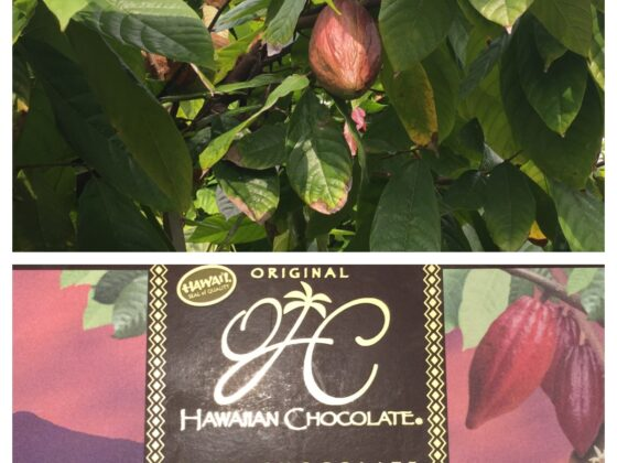 The Original Hawaiian Chocolate Factory