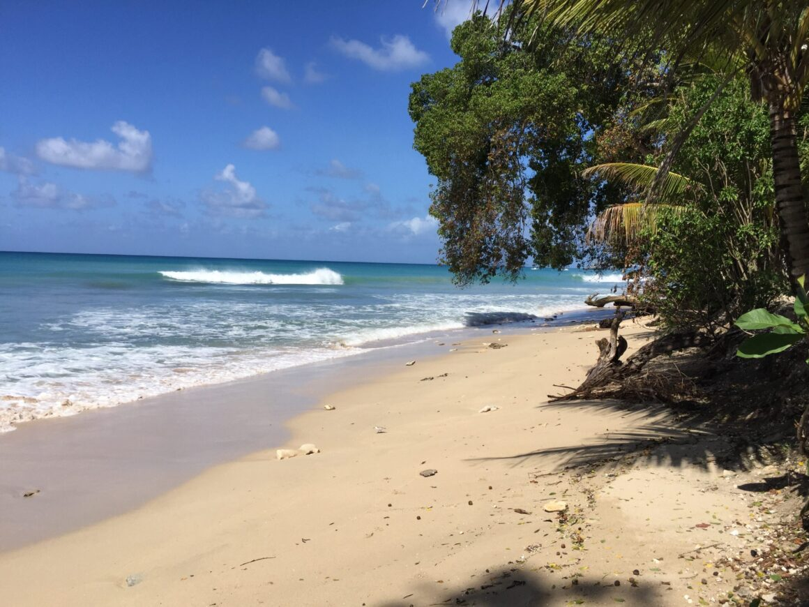 On of the Many Beautiful Barbados Beaches