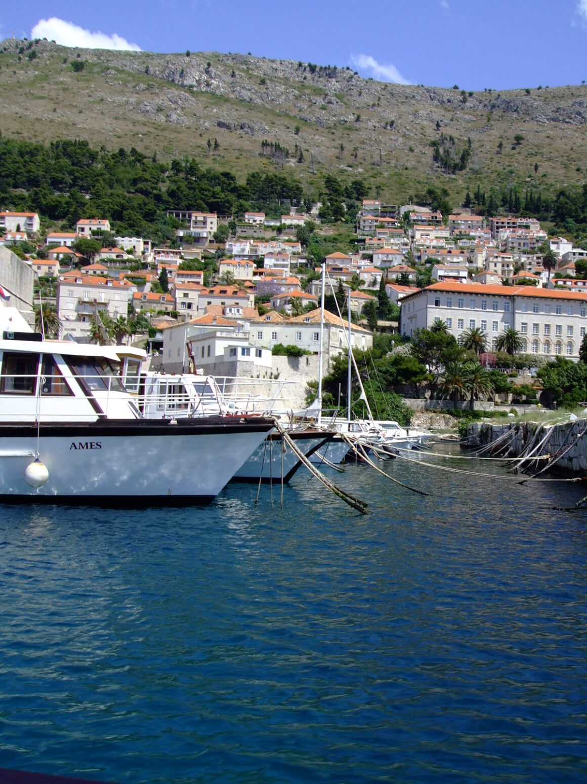view of the town of cavtat from harbour
