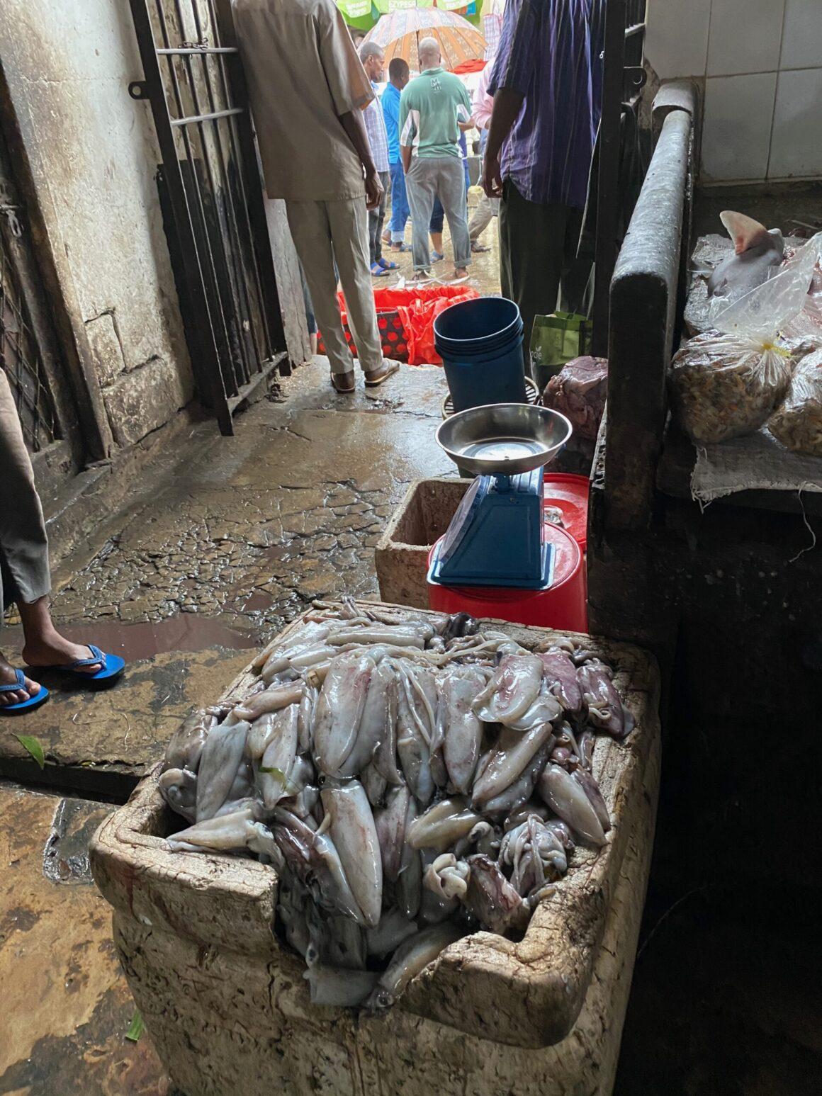 Darajani Market fresh fish available daily
