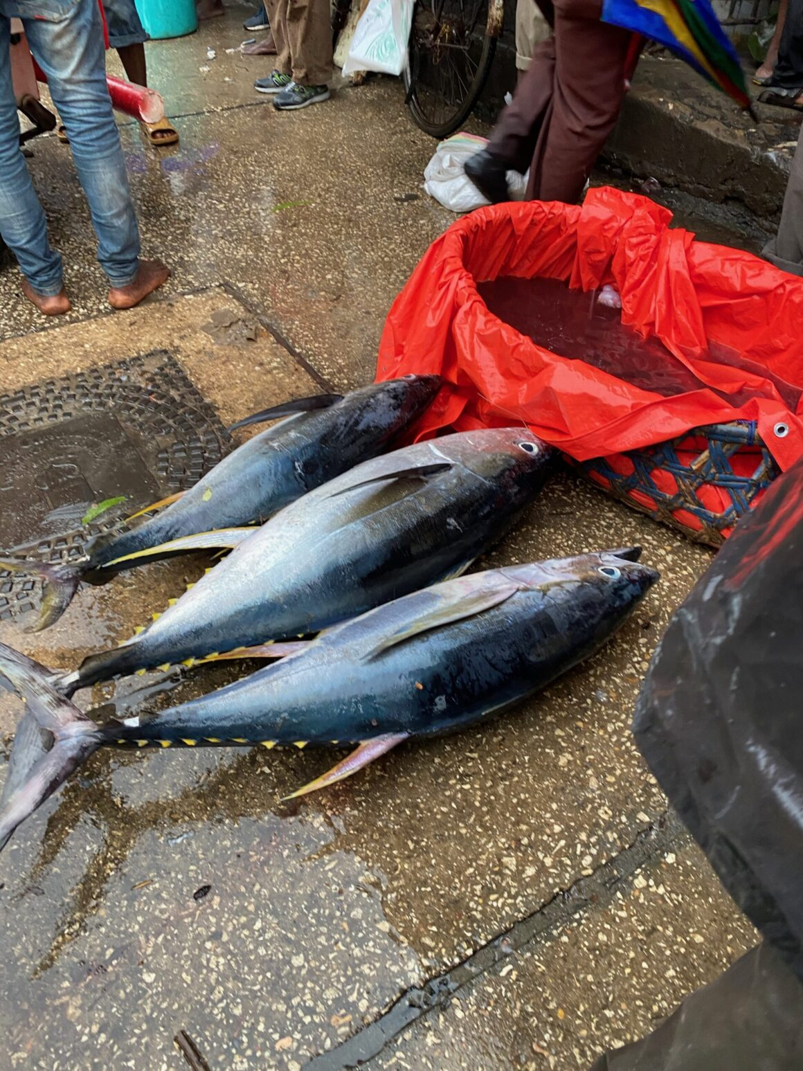 Darajani Market fresh fish