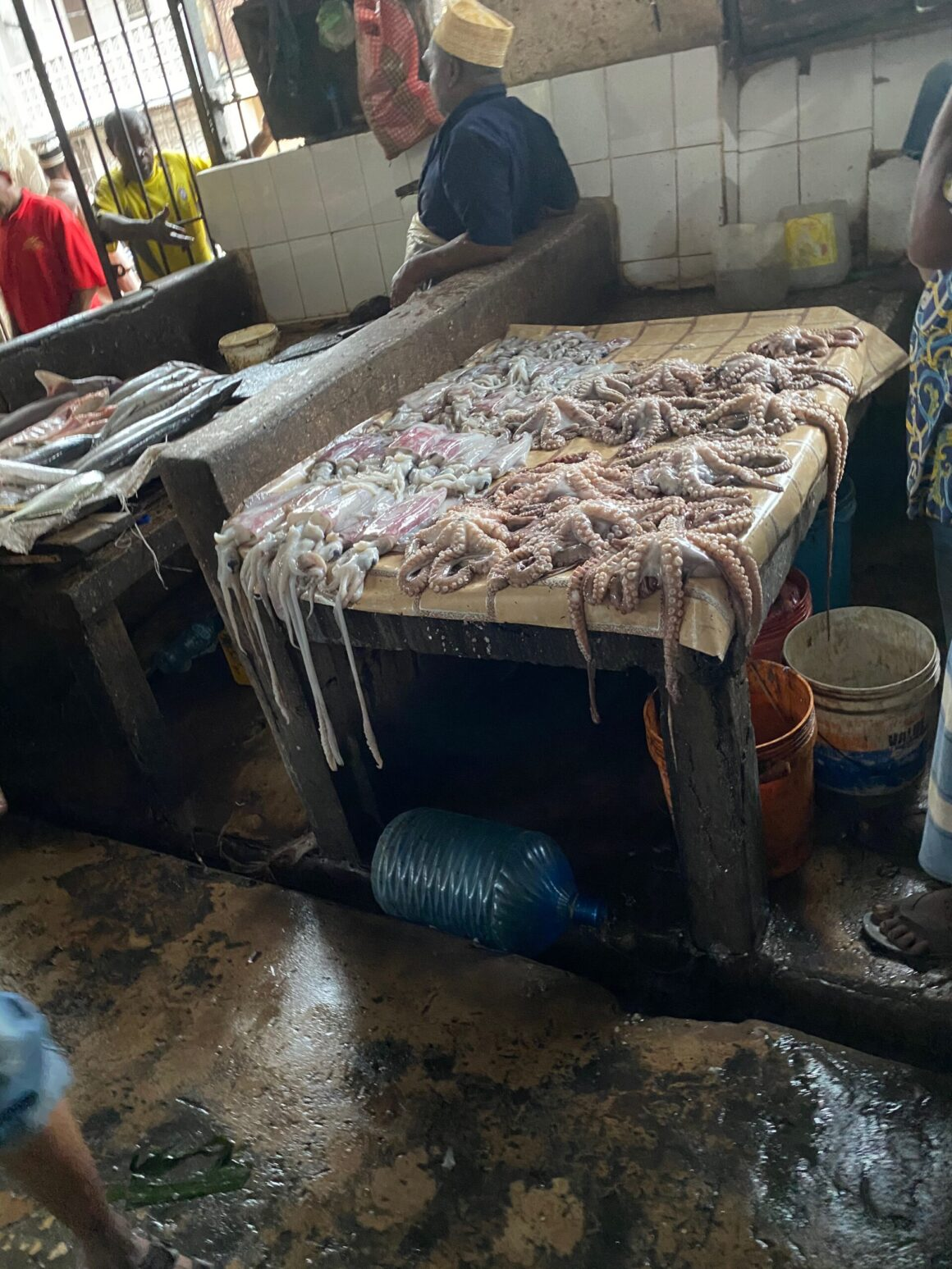 Darajani Market octopus stall